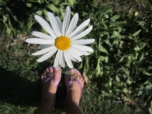 My feet in Brazilian soil with my favorite flower